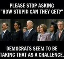 StupidDems